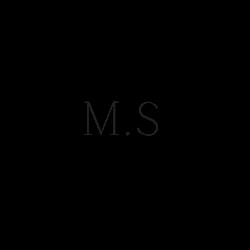 MS Rédaction Web
